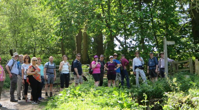 Glen's Dedham Tour and Langham Loop – Sunday 6th May